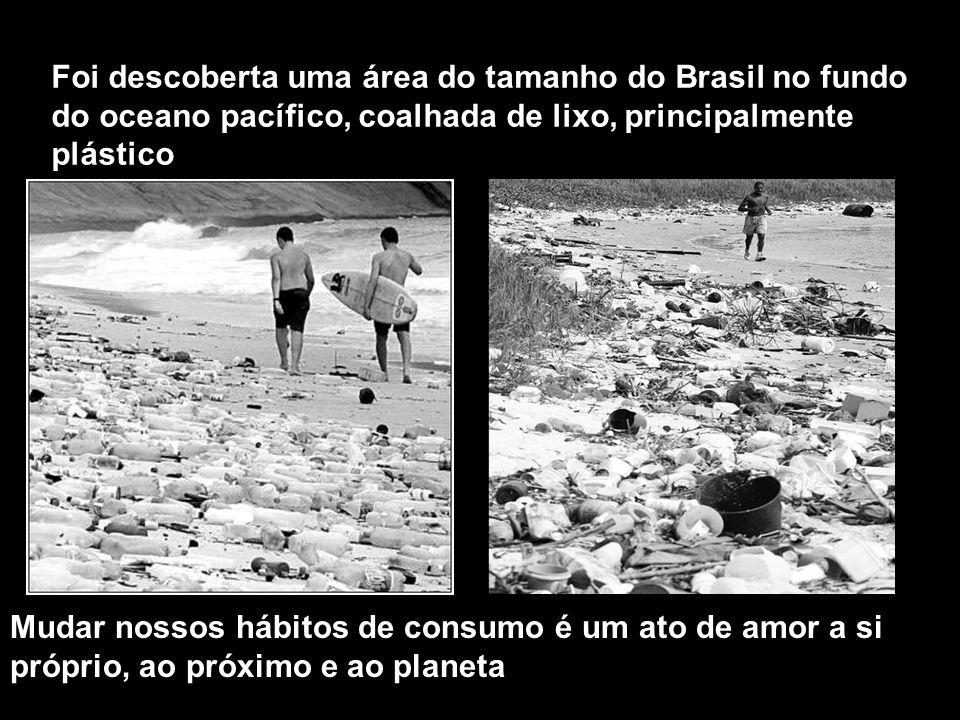 Foi descoberta uma área do tamanho do Brasil no fundo do oceano pacífico, coalhada de lixo, principalmente plástico