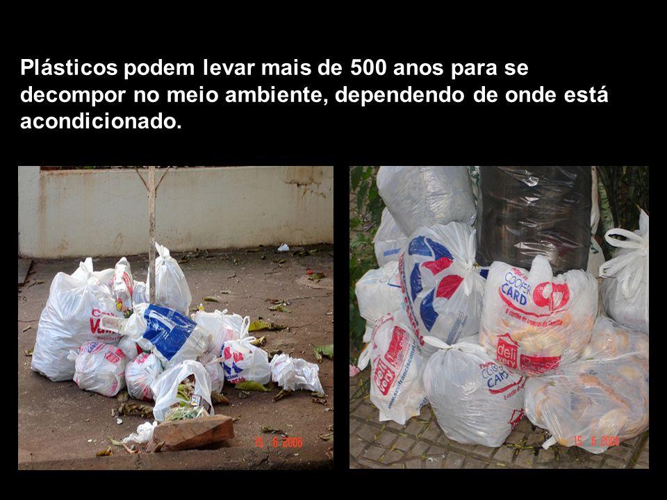 Plásticos podem levar mais de 500 anos para se decompor no meio ambiente, dependendo de onde está acondicionado.