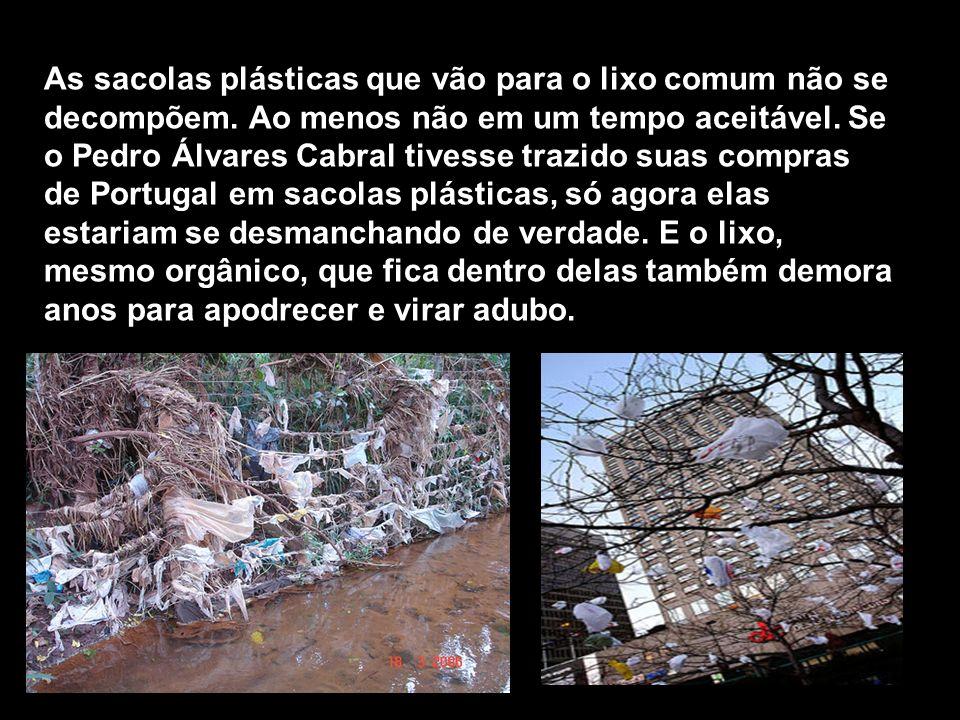 As sacolas plásticas que vão para o lixo comum não se decompõem