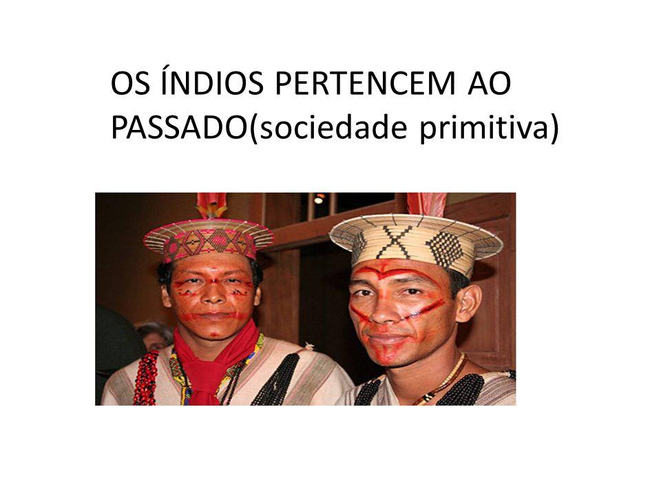 OS ÍNDIOS PERTENCEM AO PASSADO(sociedade primitiva)