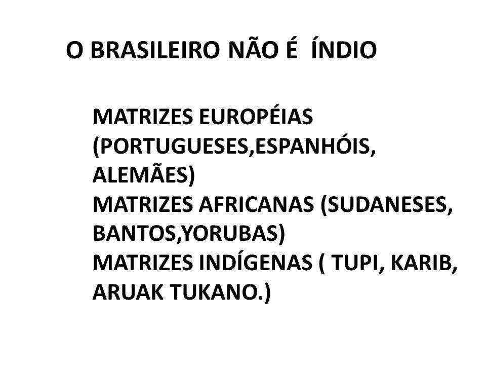 O BRASILEIRO NÃO É ÍNDIO