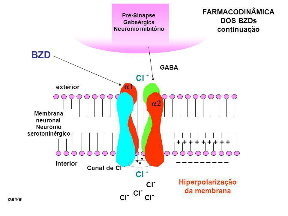BZD Cl - a1 a2 Cl - FARMACODINÂMICA DOS BZDs continuação