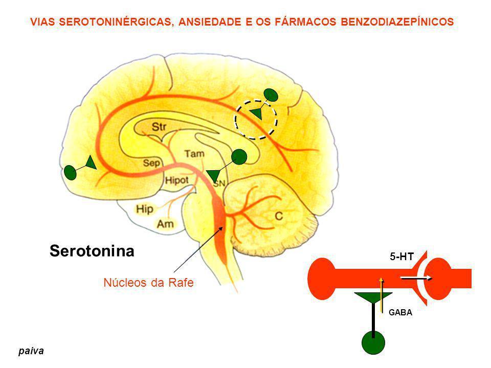 Serotonina Núcleos da Rafe