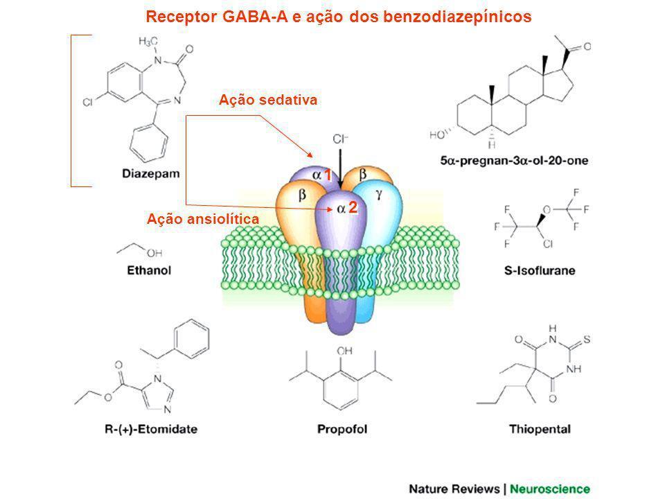 Receptor GABA-A e ação dos benzodiazepínicos
