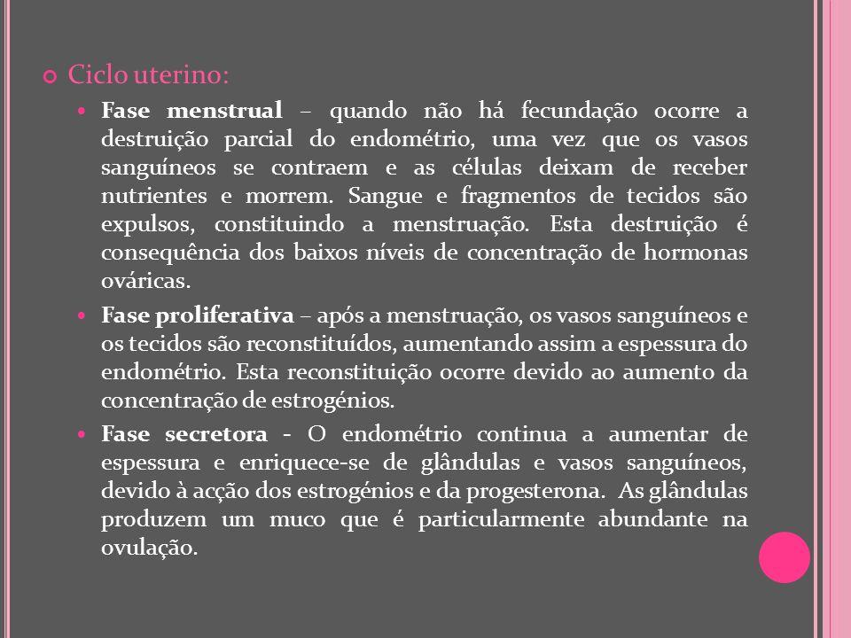 Ciclo uterino: