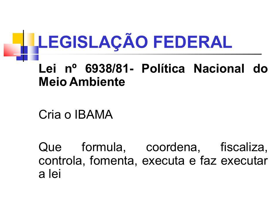 LEGISLAÇÃO FEDERAL Lei nº 6938/81- Política Nacional do Meio Ambiente