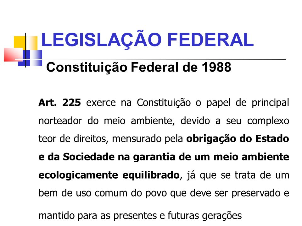 LEGISLAÇÃO FEDERAL Constituição Federal de 1988