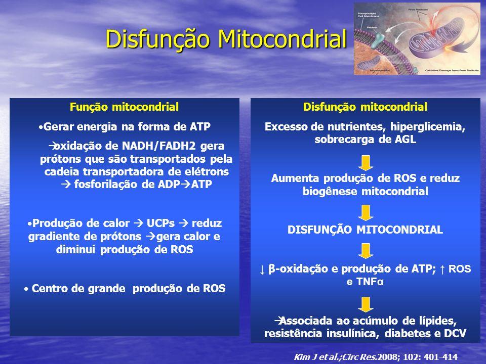 Disfunção Mitocondrial