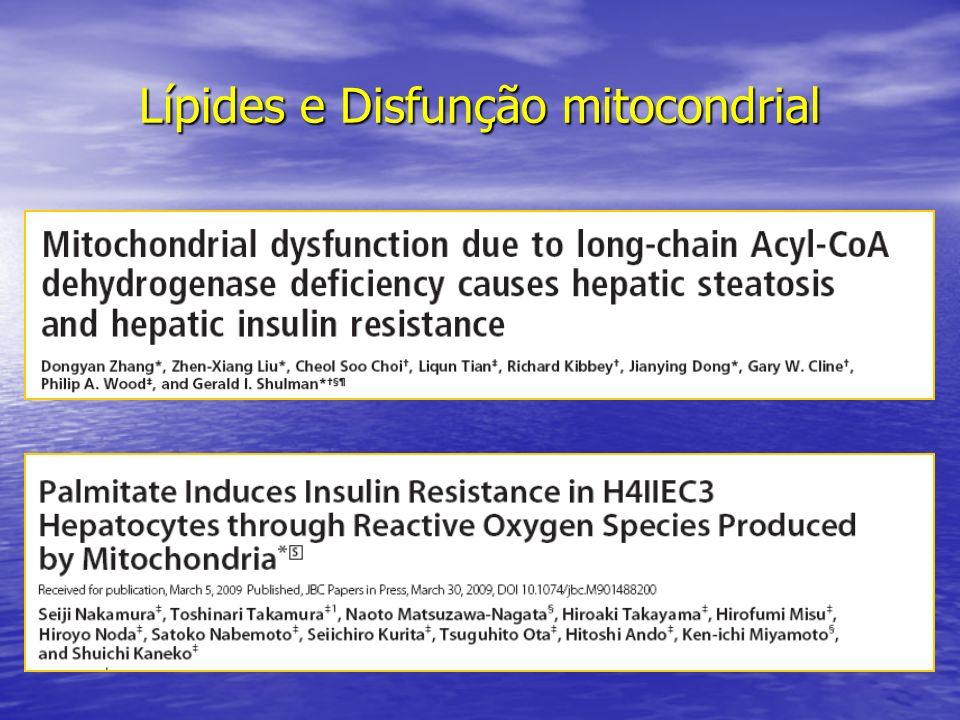 Lípides e Disfunção mitocondrial