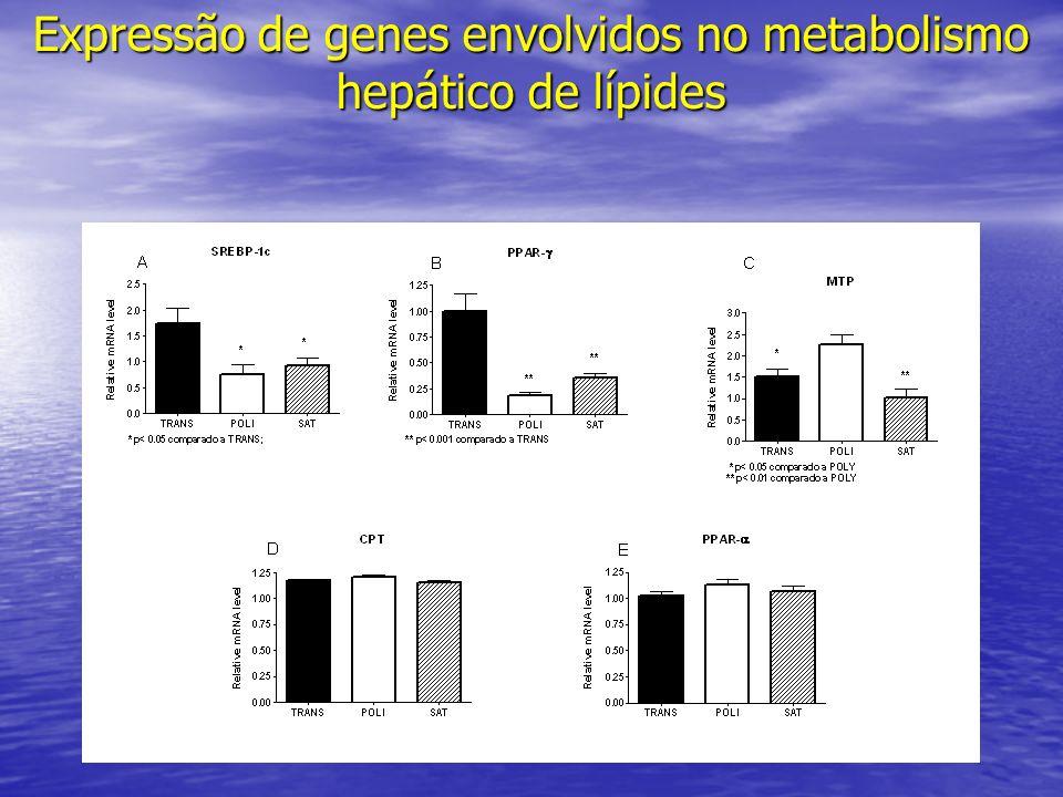 Expressão de genes envolvidos no metabolismo hepático de lípides