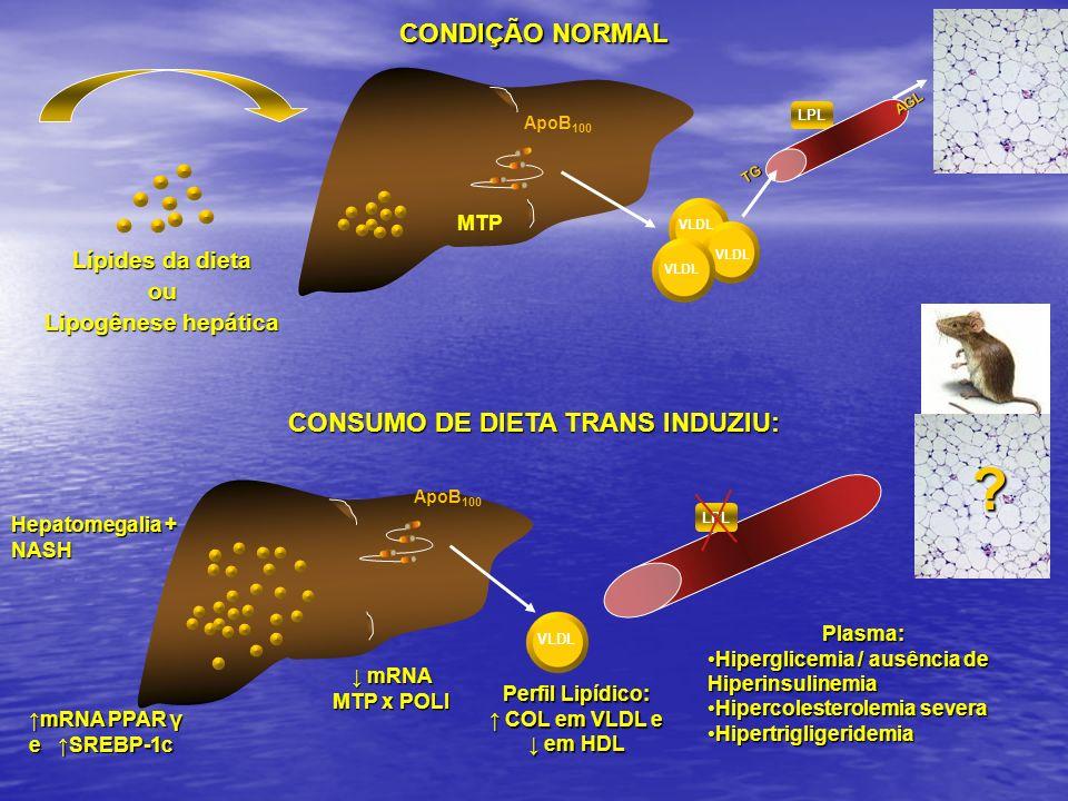CONSUMO DE DIETA TRANS INDUZIU:
