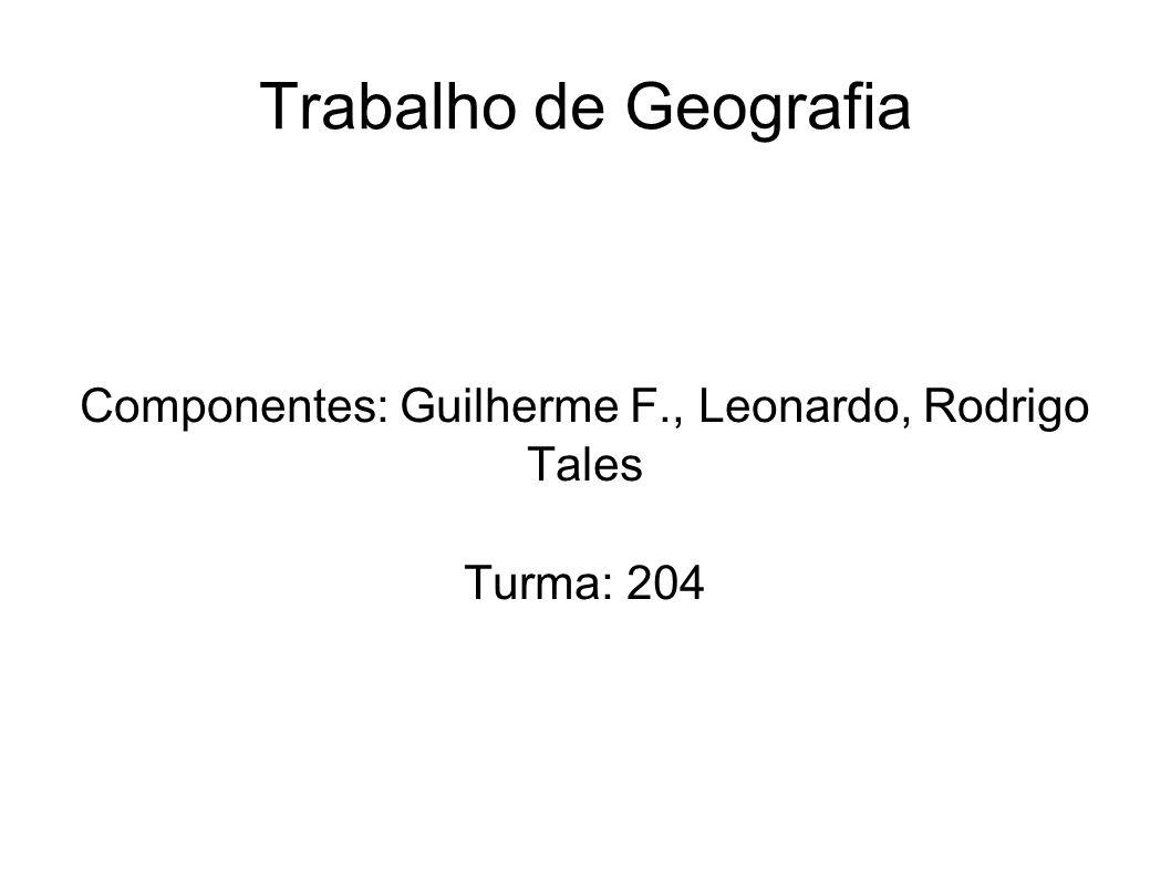 Componentes: Guilherme F., Leonardo, Rodrigo Tales Turma: 204
