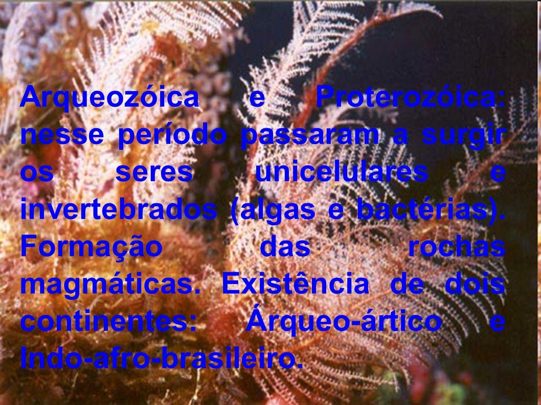 Arqueozóica e Proterozóica: nesse período passaram a surgir os seres unicelulares e invertebrados (algas e bactérias).