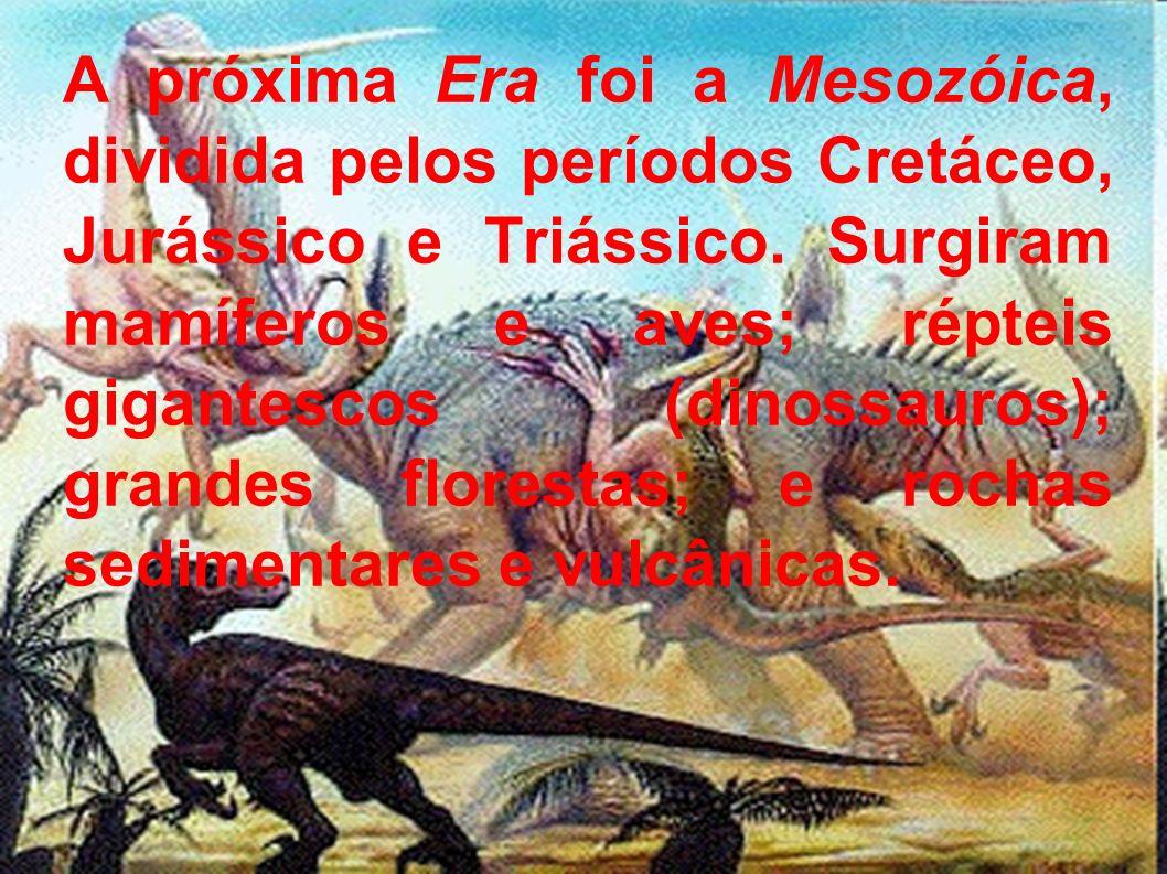 A próxima Era foi a Mesozóica, dividida pelos períodos Cretáceo, Jurássico e Triássico.
