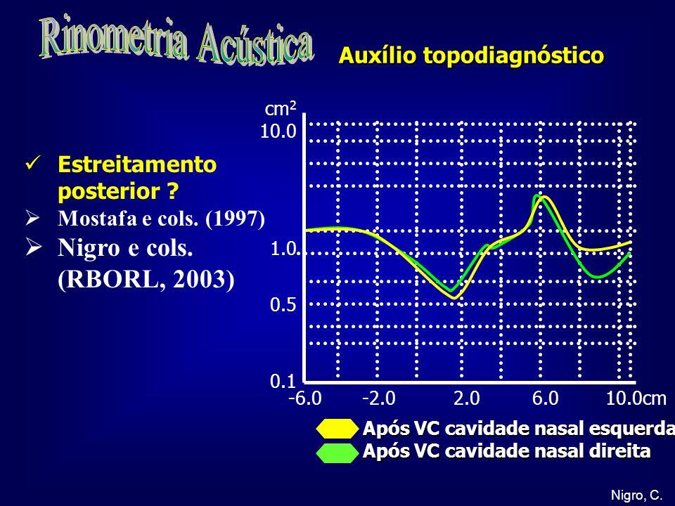 Rinometria Acústica Nigro e cols. (RBORL, 2003)