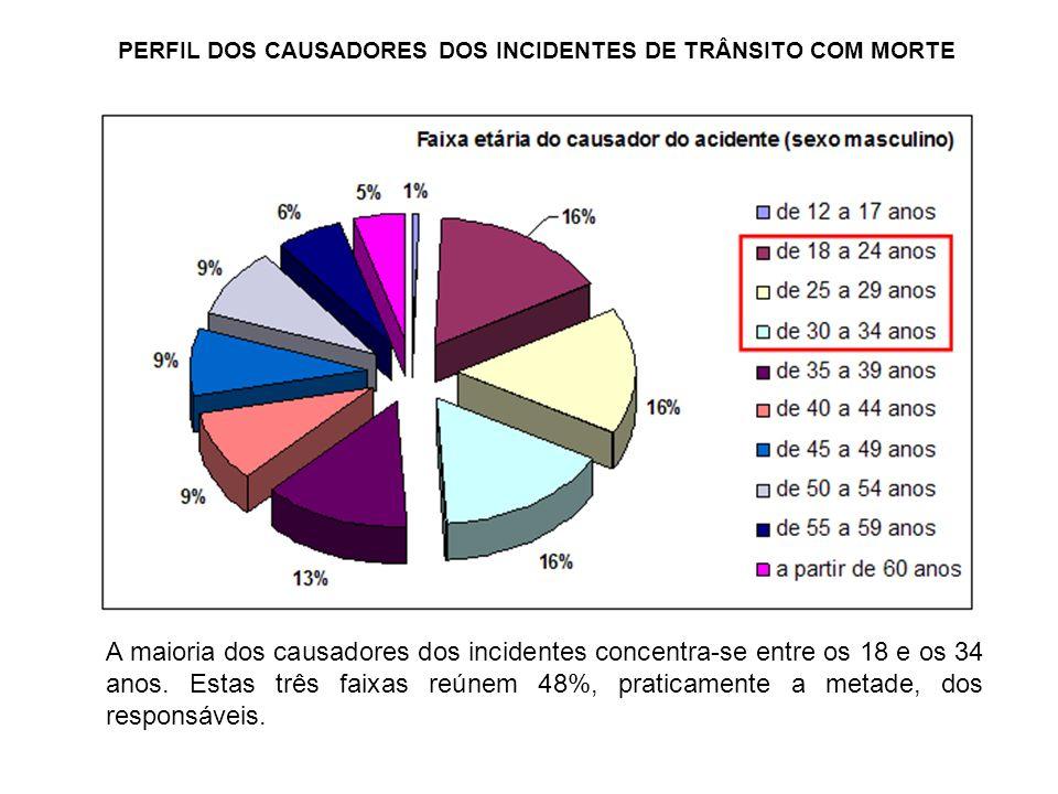 PERFIL DOS CAUSADORES DOS INCIDENTES DE TRÂNSITO COM MORTE