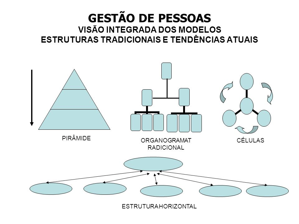 ORGANOGRAMATRADICIONAL