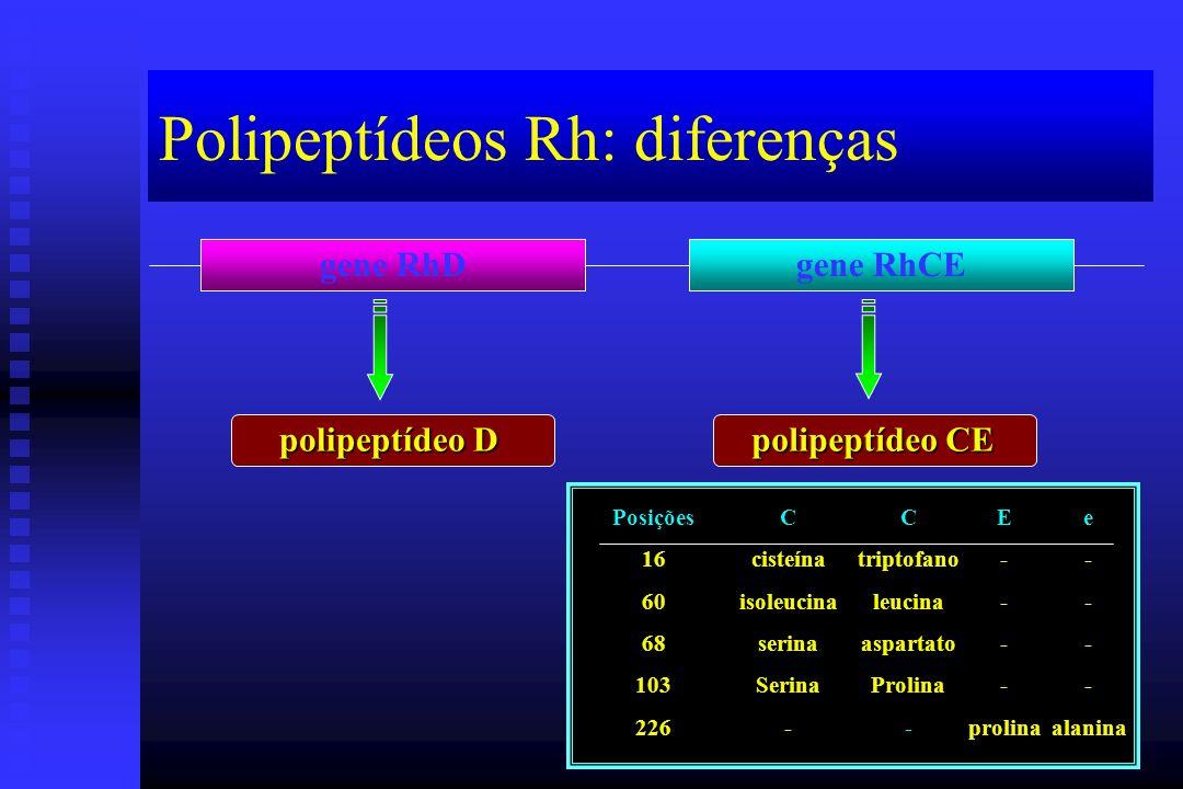Polipeptídeos Rh: diferenças