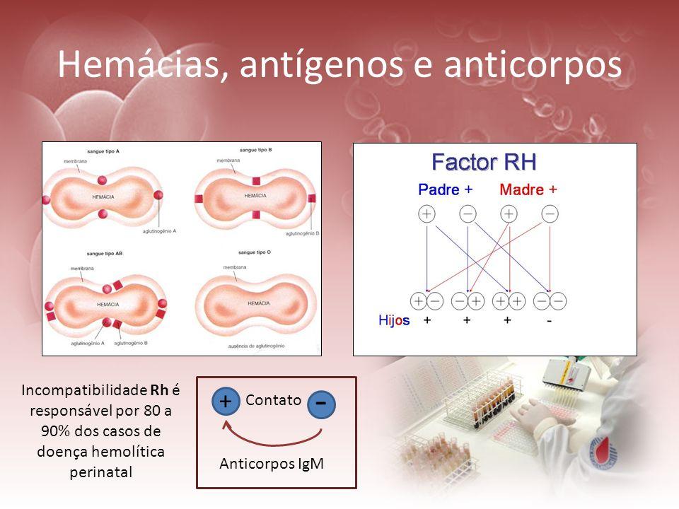 Hemácias, antígenos e anticorpos