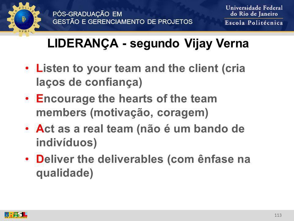 LIDERANÇA - segundo Vijay Verna