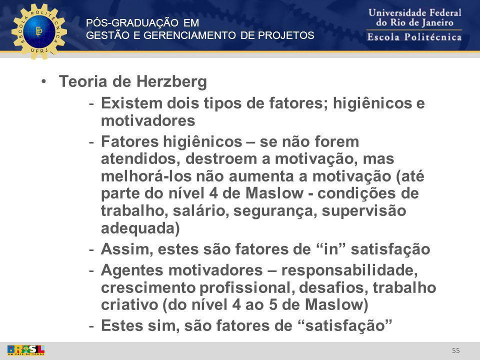 Teoria de Herzberg Existem dois tipos de fatores; higiênicos e motivadores.