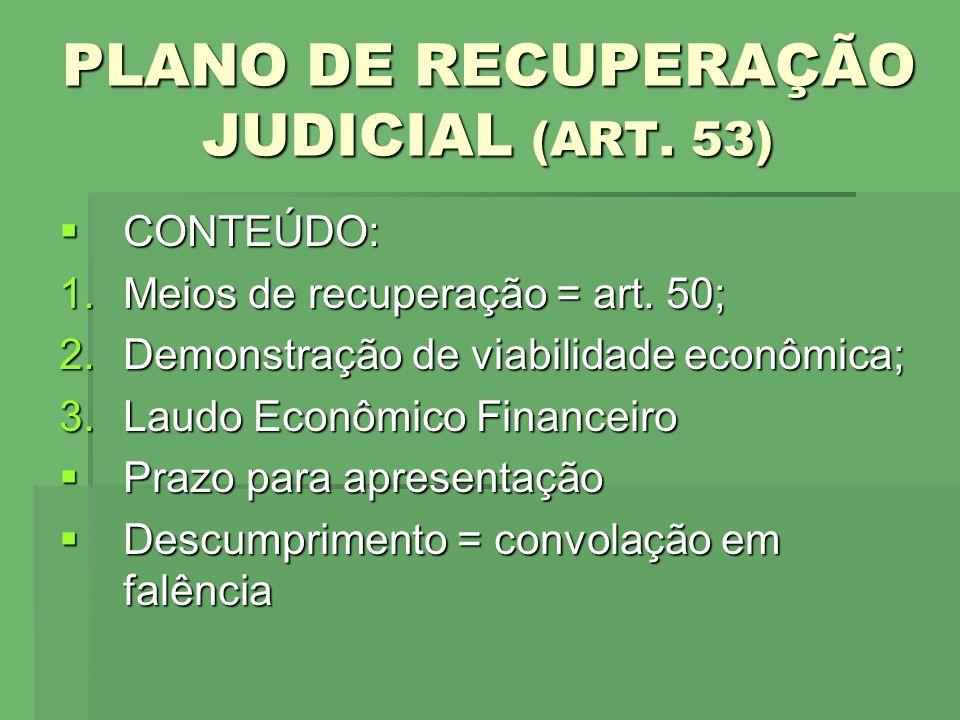 PLANO DE RECUPERAÇÃO JUDICIAL (ART. 53)