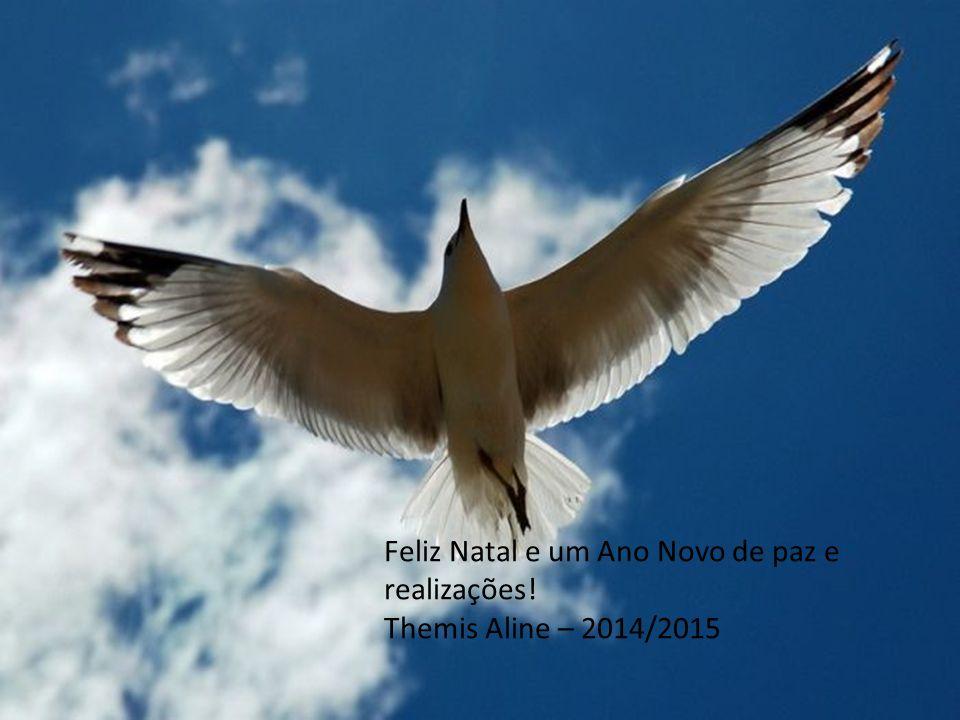 Feliz Natal e um Ano Novo de paz e realizações!