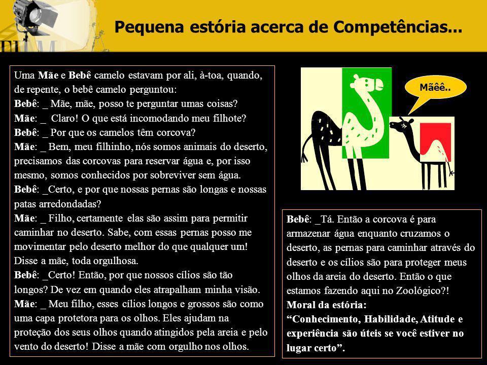 Pequena estória acerca de Competências...