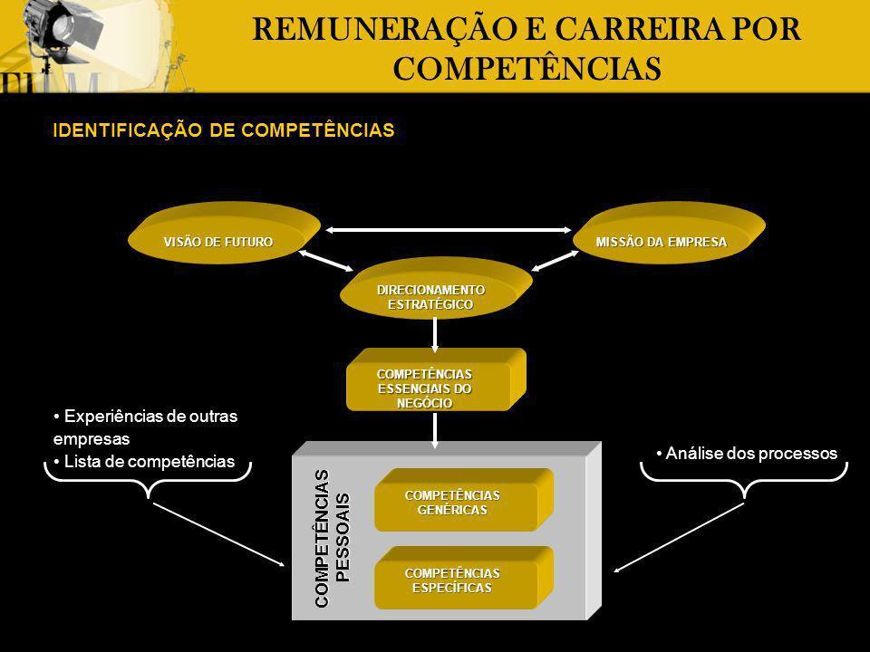 REMUNERAÇÃO E CARREIRA POR COMPETÊNCIAS IDENTIFICAÇÃO DE COMPETÊNCIAS