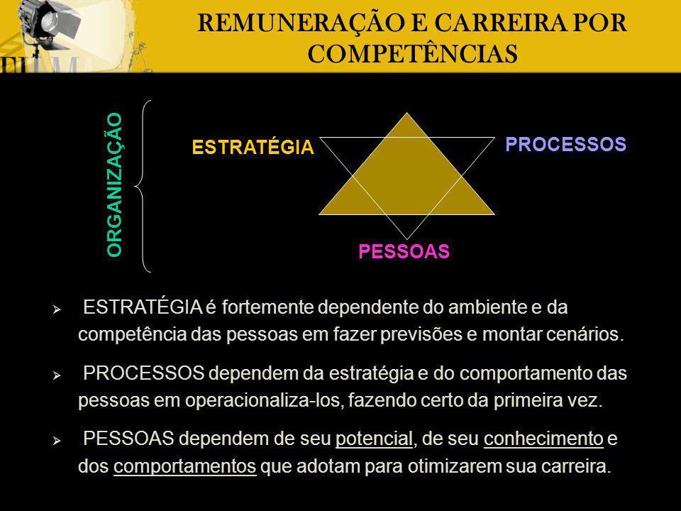 REMUNERAÇÃO E CARREIRA POR COMPETÊNCIAS