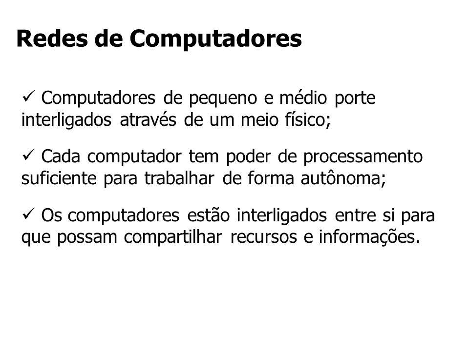 Redes de Computadores Computadores de pequeno e médio porte interligados através de um meio físico;
