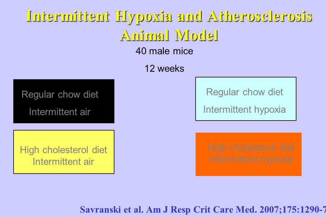 Apn 201 Ia Obstrutiva Do Sono E Doen 199 A Cardiovascular Ppt