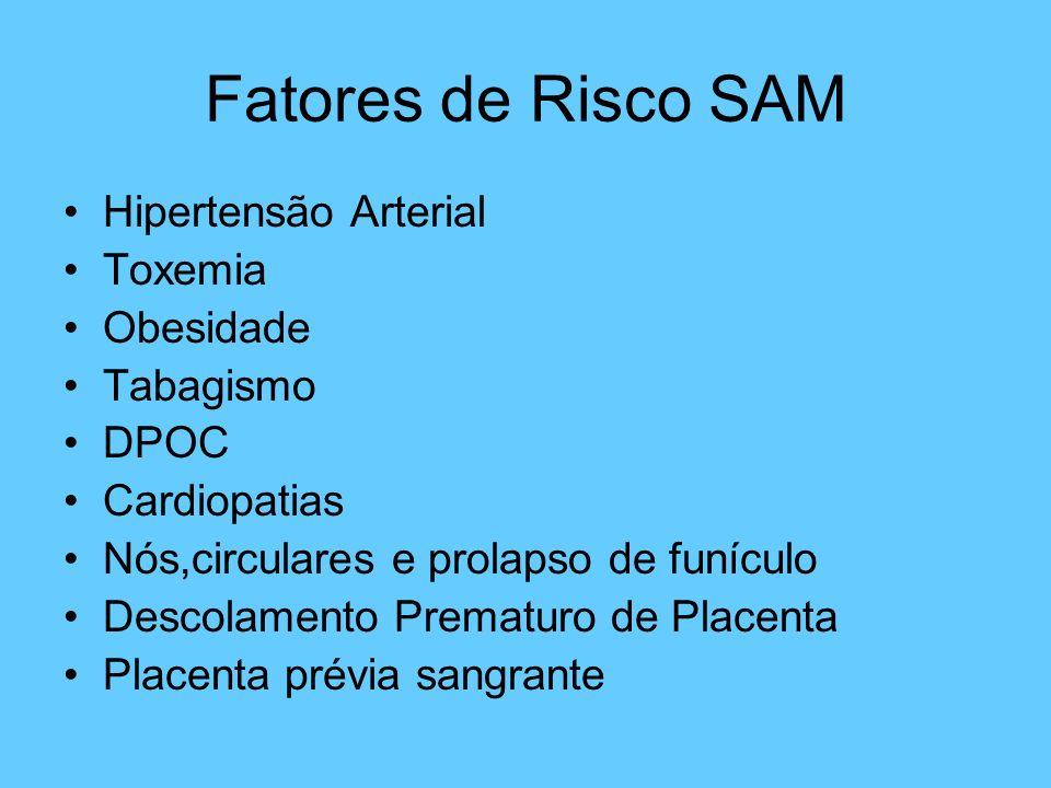 Fatores de Risco SAM Hipertensão Arterial Toxemia Obesidade Tabagismo