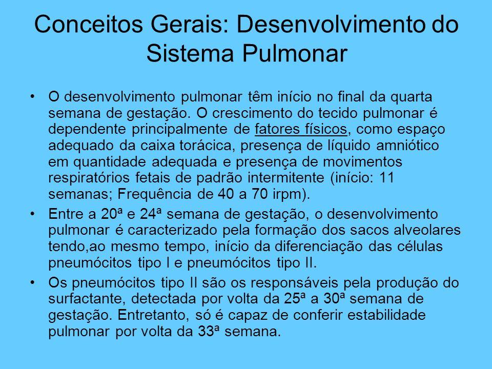Conceitos Gerais: Desenvolvimento do Sistema Pulmonar