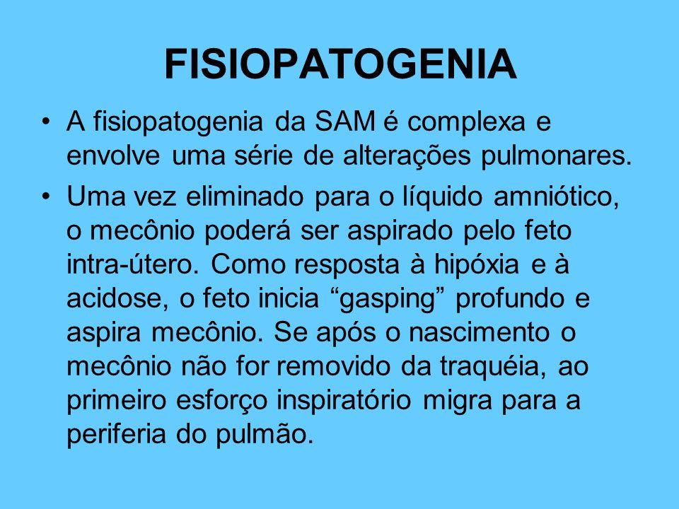 FISIOPATOGENIA A fisiopatogenia da SAM é complexa e envolve uma série de alterações pulmonares.
