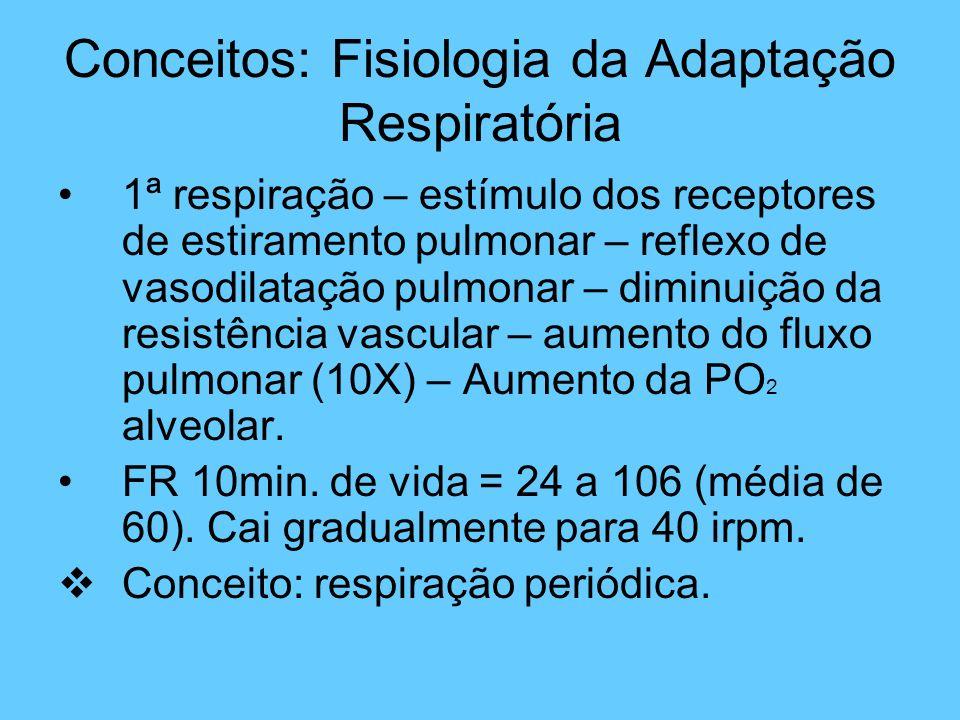 Conceitos: Fisiologia da Adaptação Respiratória