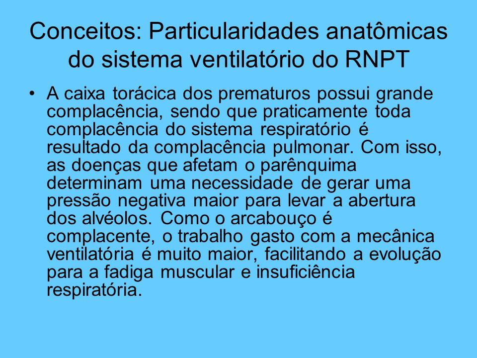 Conceitos: Particularidades anatômicas do sistema ventilatório do RNPT