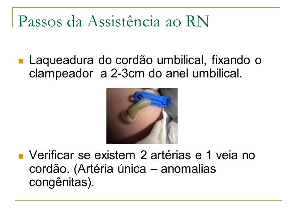 Passos da Assistência ao RN