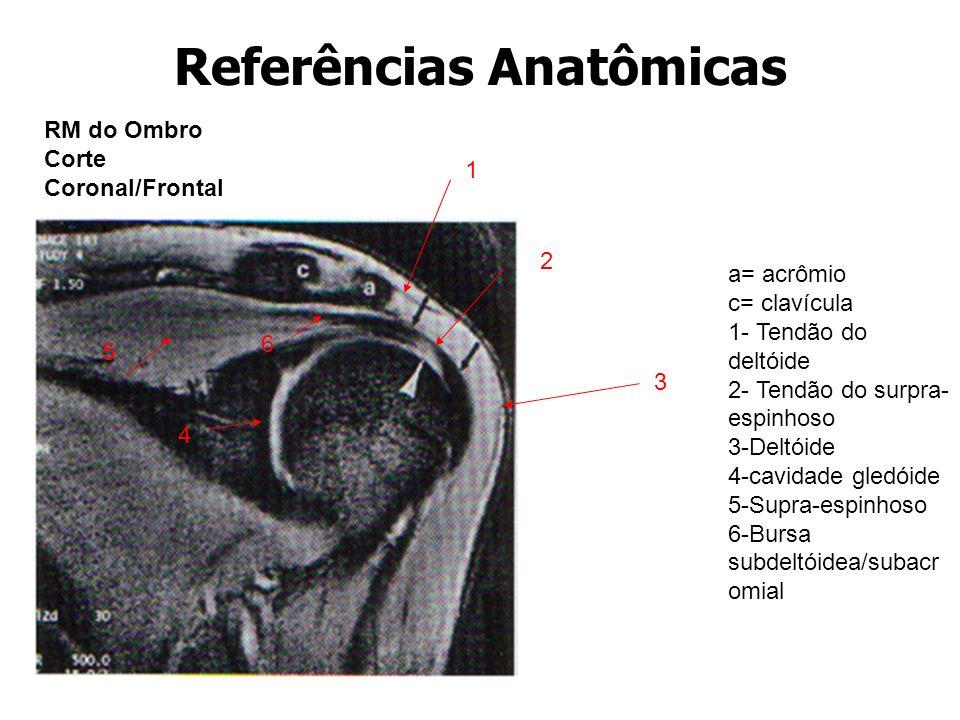 Referências Anatômicas