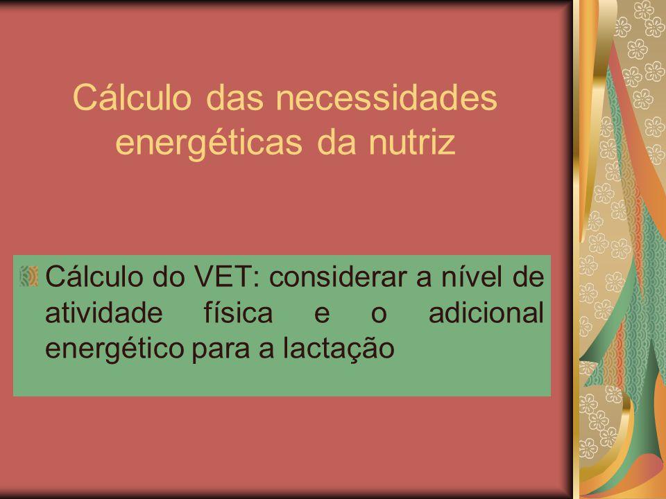 Cálculo das necessidades energéticas da nutriz