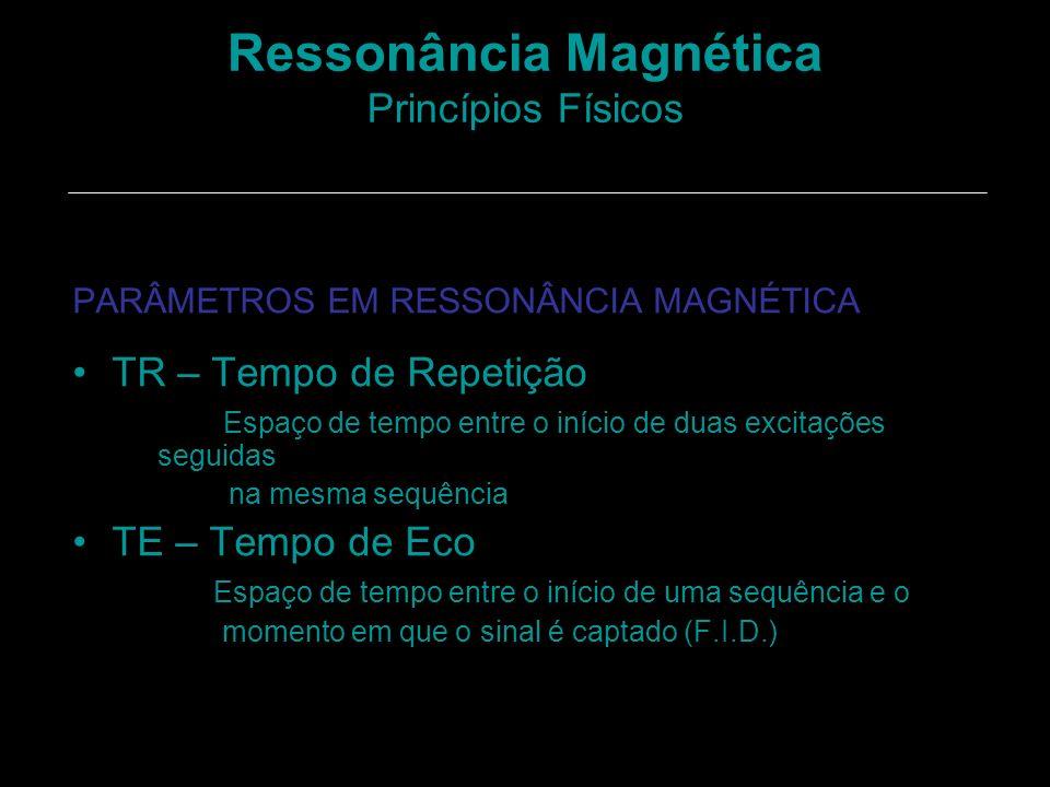 Ressonância Magnética Princípios Físicos