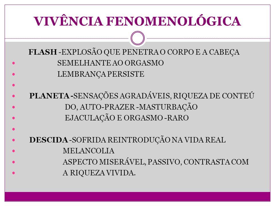 VIVÊNCIA FENOMENOLÓGICA