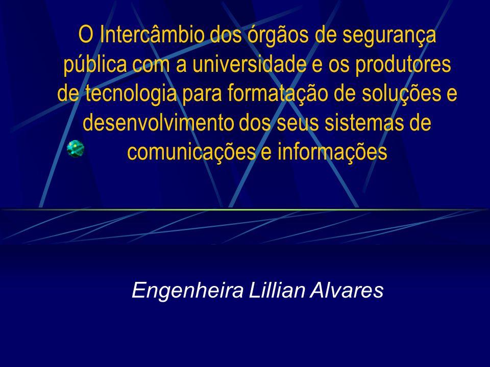 Engenheira Lillian Alvares
