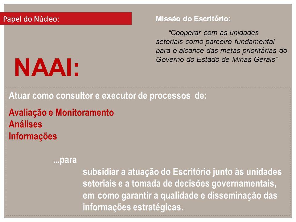 NAAI: Atuar como consultor e executor de processos de:
