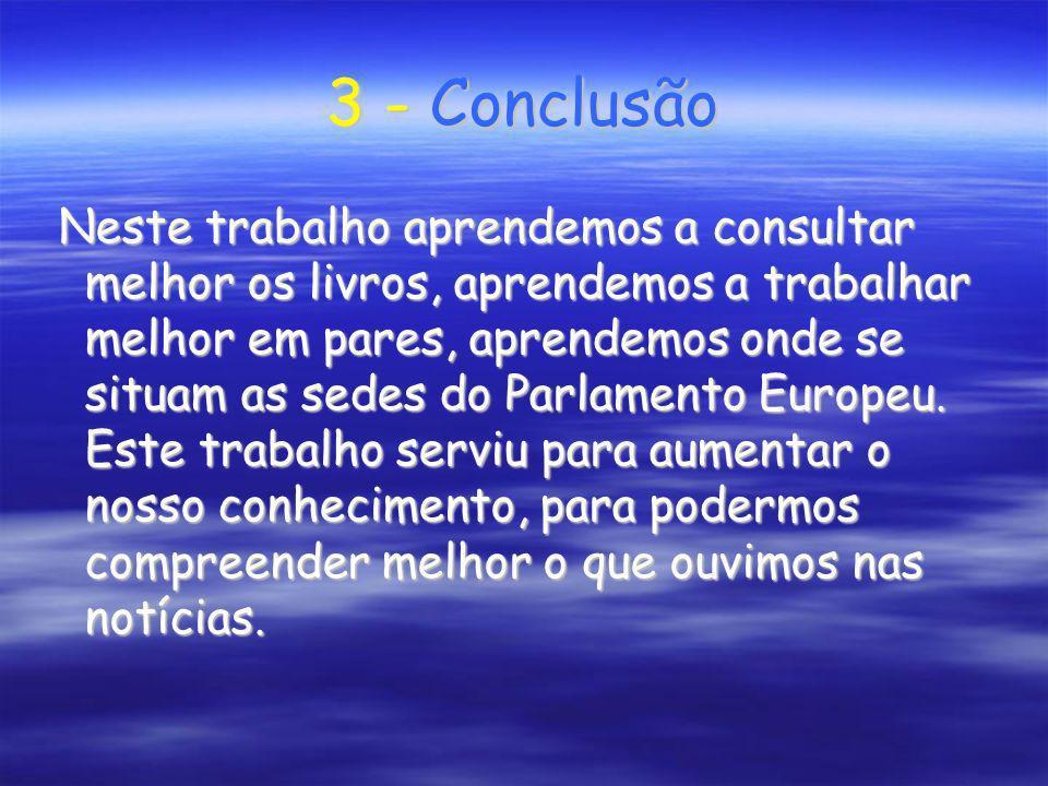 3 - Conclusão