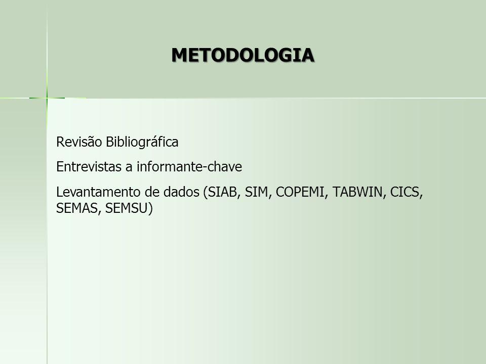 METODOLOGIA Revisão Bibliográfica Entrevistas a informante-chave