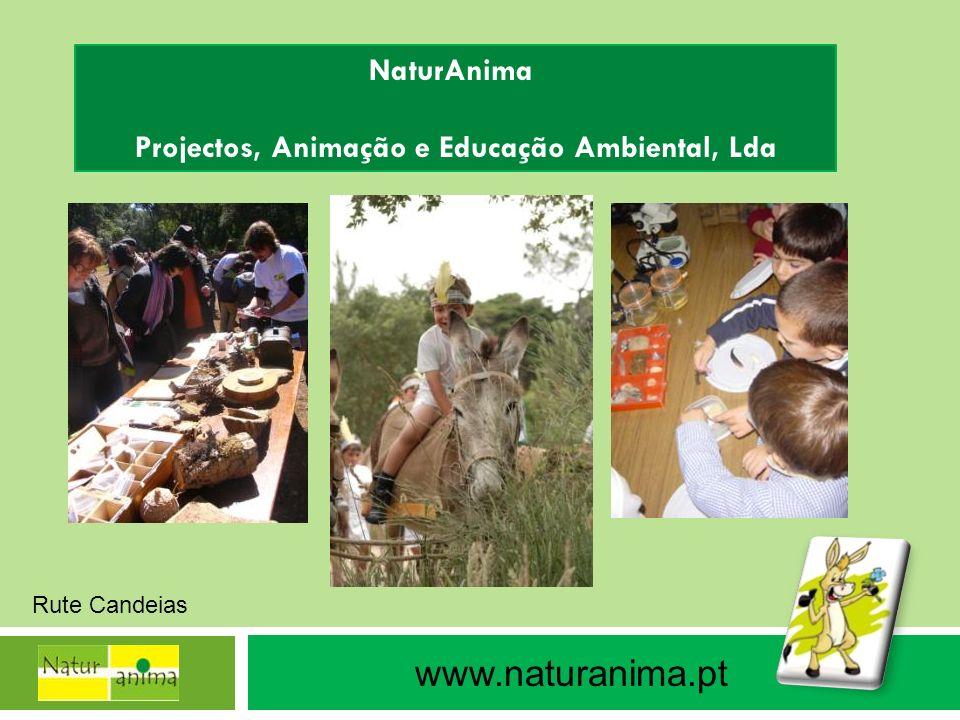 Projectos, Animação e Educação Ambiental, Lda