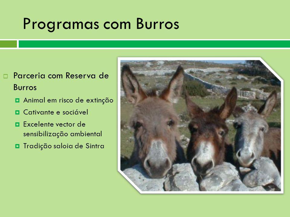 Programas com Burros Parceria com Reserva de Burros