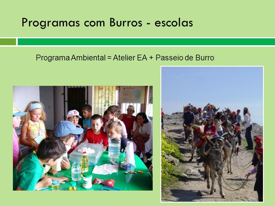 Programas com Burros - escolas