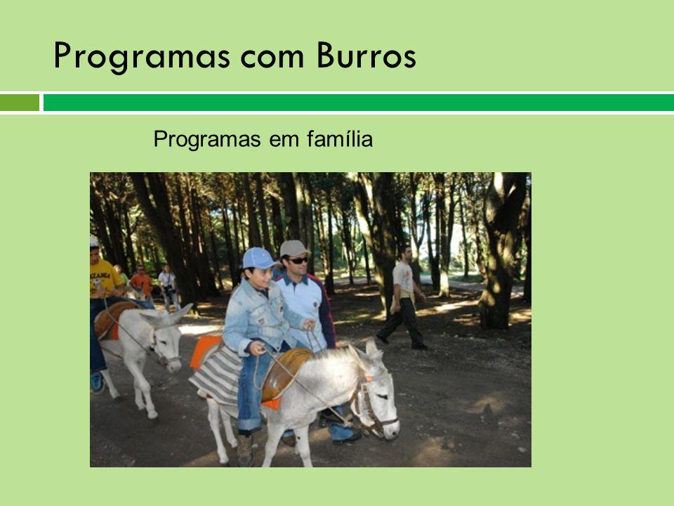 Programas com Burros Programas em família